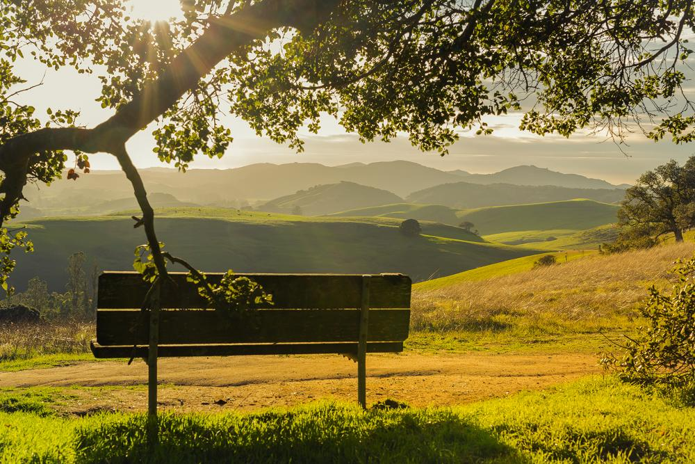 5 Reasons Why Petaluma Is a Great Place to Visit