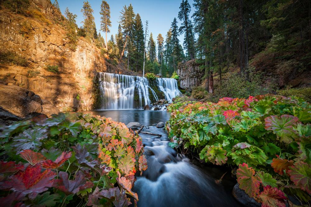 Get to Know McCloud, a Hidden Gem in the Shasta Cascade