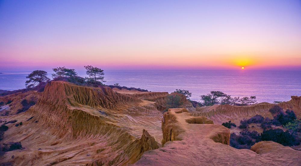 10 Places to Find Solitude in California Cities