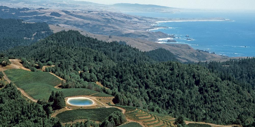 So You Think You Know Sonoma County?