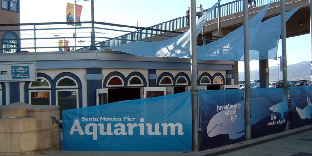Heal the Bay Aquarium