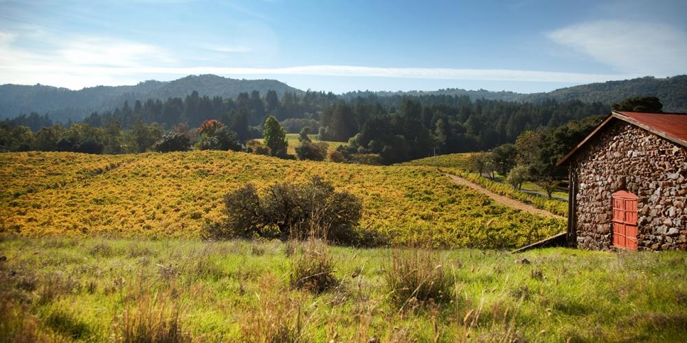 Sonoma County State & City Parks
