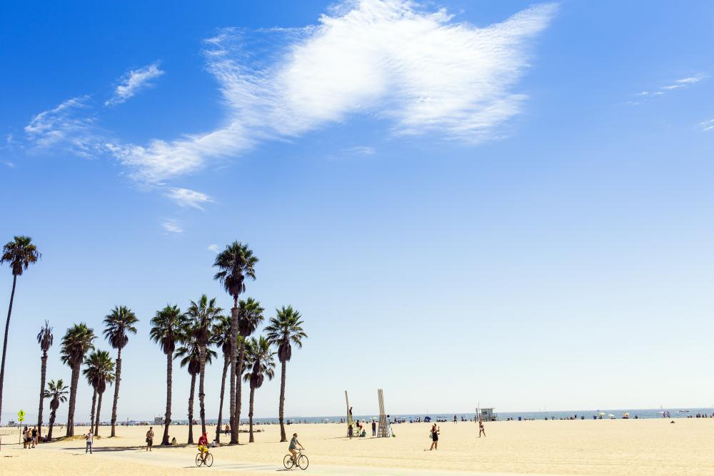 Top Things to Do in Los Angeles County