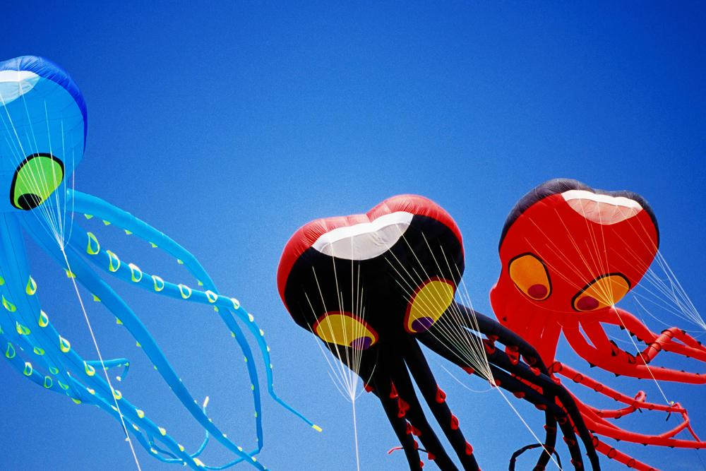 Go Fly a Kite in Berkeley This Weekend