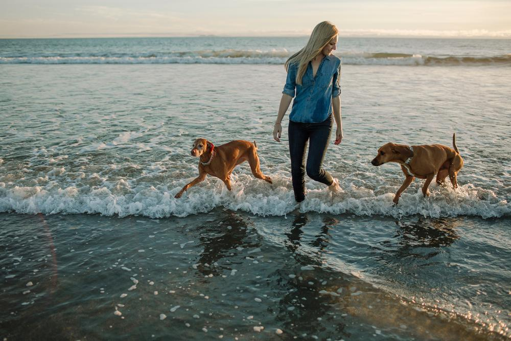 Whale Watching, Traveling with Your Dog, and More