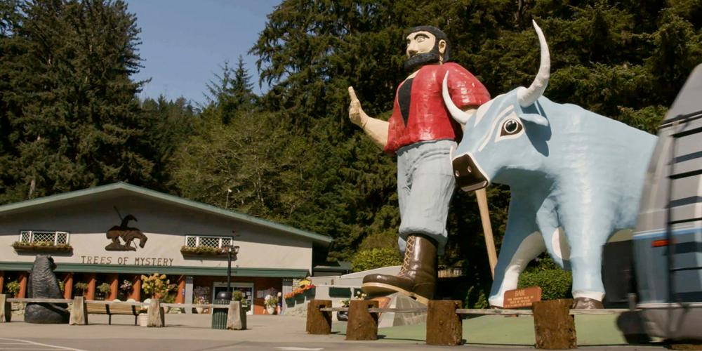 Things to Do in Redwood National Park