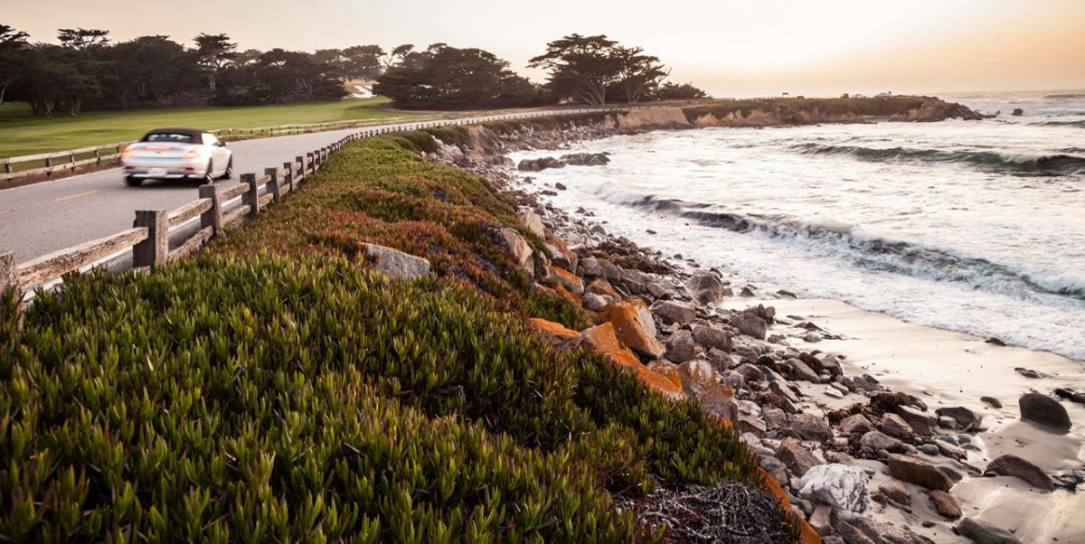 Take a Scenic Turn on the 17-Mile Drive