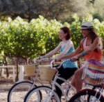 Trails, Parks, and Biking in Napa Valley