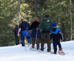 Preparing for a winter visit to Sequoia & Kings Canyon National Parks