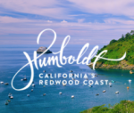 Itinerary: 2 days in Redwood National Park