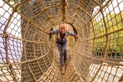 5 Awesome Family Attractions in and Around the Bay Area