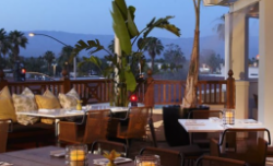 Dining in Palm Springs