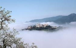 EVENTS - HEARST CASTLE
