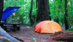 Redwood National & State Park campgrounds