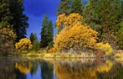 California State Parks – Fall Colors