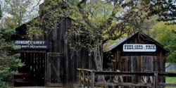 8 Family-Friendly Gold Rush Adventures