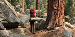 Lodging & Camping in Sequoia & Kings Canyon