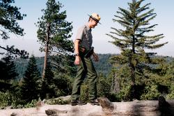 Park Ranger Tips: Sequoia and Kings Canyon National Parks