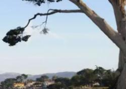 See Monterey – Pacific Grove