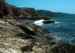 Beaches of Point Reyes