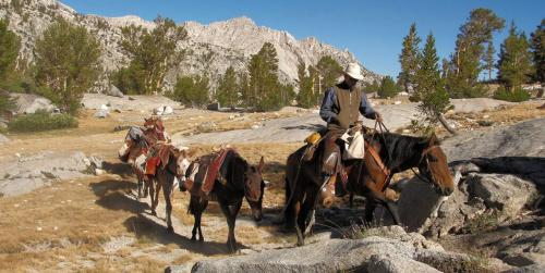 Guided Adventures at Sequoia & Kings Canyon National Parks