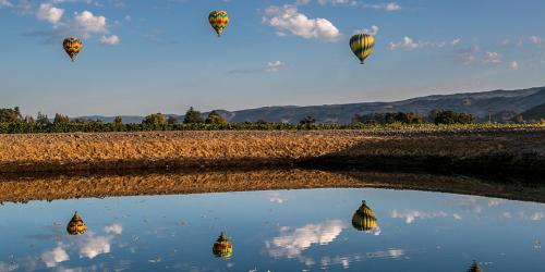 Special Tours in Napa Valley