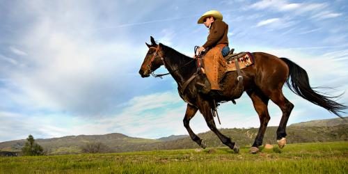 Cowboy Culture, Highway One, Bikes and Hikes LA
